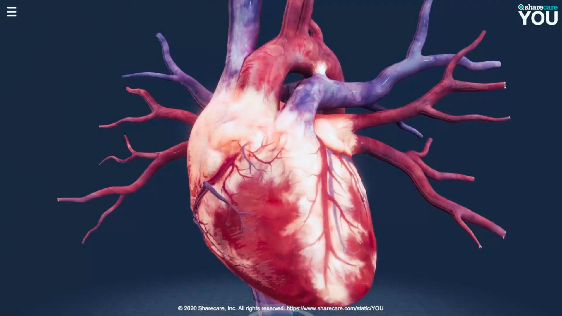 Animation vom Herzen